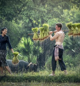 Las granjas millennials
